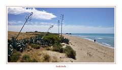 I colori della Sicilia - 27 (Jambo Jambo) Tags: licata agrigento sicilia sicily italia italy panorama landscape mare spiaggia sea beach seascape panasonicdmcft25 jambojambo falconara butera