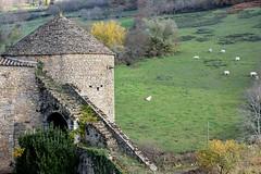 DSC_0177 (FyP-55) Tags: chateau castle medieval berzélechâtel france