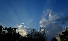 cloudy sunset boulevard (nafoto!) Tags: sunset sonnenuntergang wolkig cloudy leicaq blue sunshine