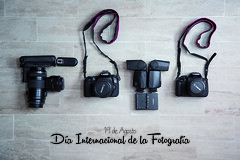 Da Foto (unvictorhugo) Tags: foto photo fotografa photography camera flash battery bateria lente world international internacional da celebracin