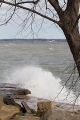 Windy Day at Marblehead Lighthouse (K.G.Hawes) Tags: erie lake greatlakes lakeerie marblehead tree water coast rock rocks trees rocky splash splashing wave waves elemental plant