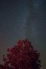 Via Láctea (Sergio Sa) Tags: milky way via astrofotografia astrophotography alqueva dark sky estrelas natureza nature stars láctea nightphotography canon 600d t3i 1855mm mourão