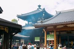 Isshin-ji, temple - Osaka (Ogiyoshisan) Tags: japan japanese   osaka traditional temple  buddhism  autumn