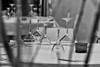 Mise en place (balboni.antonella) Tags: bicchieri calici galateo apparecchiare tavolo ristorante bn ospiti tavoli cena pranzo trasparenze