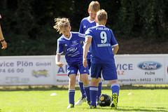 Feriencamp Pln 30.08.16 - b (84) (HSV-Fuballschule) Tags: hsv fussballschule feriencamp pln vom 2908 bis 02092016