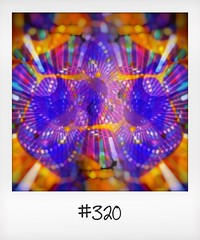 """#DailyPolaroid of 13-8-16 #320 • <a style=""""font-size:0.8em;"""" href=""""http://www.flickr.com/photos/47939785@N05/29681945135/"""" target=""""_blank"""">View on Flickr</a>"""