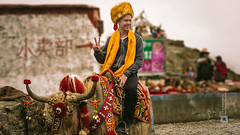 Tibet, animal abuse, candid shot of a traveler riding on a yak for pictures at a tourist spot in Tibet (China), 06-2016, 39 (Vlad Meytin, vladsm.com) (Vlad Meytin | Instagram: vmwelt) Tags: chengguan china khimporiumco meytin tibet tibetan vladmeytin abusinganimals animalabuse art artgallery artists artphoto artworld asia candid carlzeiss chinese fe5518 gallery highaltitude mainstream photography photographyart pictures riding sitting sony sonya7 sonyalpha streetphotography summer touristspot tourists touristsintibet traveler usinganimals vladsm vladsmcom vmwelt westerner yak zeiss