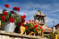 Los geranios de Sta. Eulalia (Carpetovetn) Tags: flores geranios iglesia espadaa staeulalia posadadevalden len sonynex5n castillaylen espaa