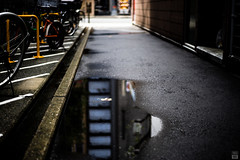 Alley/Puddle/Dead leaf (yasu19_67) Tags: alley puddle deadleaf atmosphere photooftheday bokeh raincloud cityscape sony7ilce7 zuiko50mmf18 50mm osaka japan xequals xequalscolornegativefilms