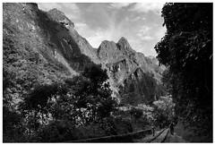 (Peripecias.) Tags: machu picchu per cusco hidroelectrica rieles tren selva peruana