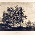 "<b>La Mare</b><br/> Gustave Greux After Rousseau (Etching) (1883)<a href=""http://farm9.static.flickr.com/8102/8450248493_c5ba455861_o.jpg"" title=""High res"">∝</a>"