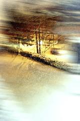 Blizzard 2013 (floralgal) Tags: snow night snowstorm dreamy blizzard blowingsnow snowylandscape westchestercountynewyork northeastsnowstorm portchesternewyork snowstormfebruary2013 stormnemo
