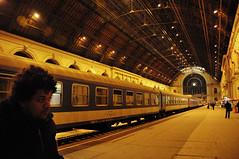 (Hugo Chinaglia) Tags: winter portrait orange station night train lights nikon hungary retrato laranja budapest railway tunnel terminal noite trem inverno budapeste hungria keleti estao tnel d90 18105mm