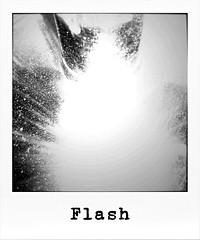(Silandi) Tags: bw polaroid photo blackwhite february 2013 polaroidstyle handyupload flickrandroidapp:filter=none renateeichert resilu