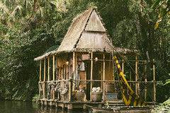 Jungle Cruise Dock (whereismouse) Tags: disney hut disneyworld shack waltdisneyworld themepark magickingdom thejunglecruise vsco vscofilm