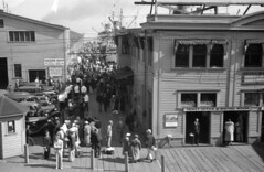 [Crowds on Union Steamship dock]