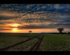 Tracks (JasonPC) Tags: mist colour field sunrise nikon shropshire tracks telford hills wrekin 2470f28 d700