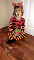 The Tiger Who Came To Tea (Radarsmum67) Tags: home book costume day dress erin stripes tiger books made national judith fancy childrens striped kerr thetigerwhocametotea