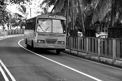 Bus (Urs_i) Tags: travel mauritius nikond4 worldtrekker afsnikkor24120mmf4gedvr