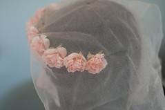 (La Mmoire Captive) Tags: roses crown voile couronne