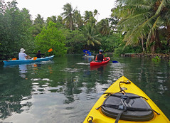 Kayaking at Nan Madol (April.Moulton) Tags: ocean travel trees sea people tree nature water canon ruins scenery kayak exploring scenic canoe explore kayaking rowing pointandshoot canoeing mangroves nationalgeographic canonpowershot micronesia waterscape compactcamera waterreflections oceania pohnpei travelphotography canons100 canonphotography underwaterhousing nanmadol federatedstatesofmicronesia pointandshootcamera canonpowershots100 aprilmoulton