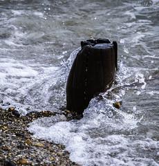 Breaking Wave (Al 8574) Tags: wood sea seaweed beach water sussex waves westsussex stones pebbles spray breakwater climping landmeetssea alicedore