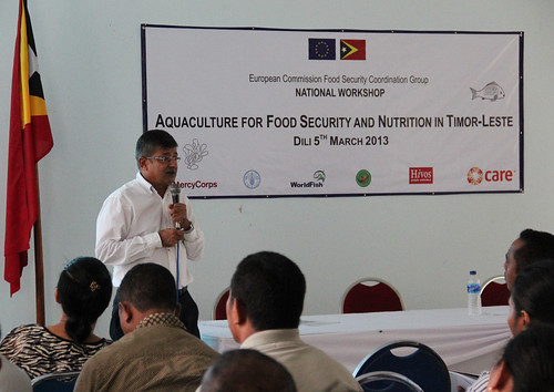 Jharendu Pant speaks about the challenges and opportunities of aquaculture in Timor-Leste at the Aquaculture for Food Security and Nutrition workshop in Dili, Timor-Leste. Photo by Holly Holmes, 2013