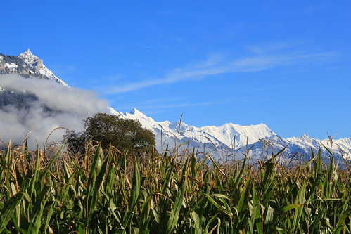 Snow on the mountains in october.