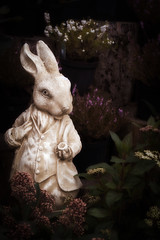 How Deep Does The Rabbit Hole Go? (Stewart485) Tags: experimental places things whiterabbit evocative vaguelyarty