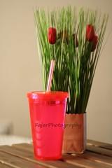 (Fajer Alajmi) Tags: flowers red flower rose