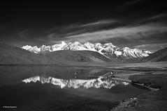 Chandratal, Himachal Pradesh (Bharat Baswani) Tags: moon lake mountains himachal bharat pradesh chandratal baswani