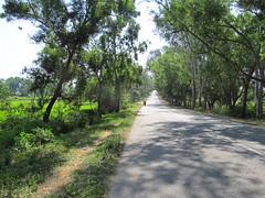 Cycling Shravanabelagola to Srirangapatna (Tomas Belcik) Tags: jamamasjid tipusultan srirangapatna gumbaz kaveririver dariyadaulatbagh kashivashwanathatemple doddagosaighat
