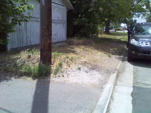Photo - Pine Street Missing Sidewalk Link (Planning/Design)