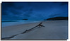 """The phrase """"action speaks louder than words,"""" is most easily proven by a swift kick to the genitals. (Christolakis) Tags: seascape beach sunrise australia driftwood nsw fingalhead graduatedndfilter 1740f40l hitechfilters tweedshire canon5dmklll"""