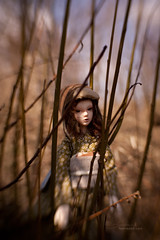 (koroa) Tags: green hat spring aya doll body head alice yukata kimono bjd ail aviator labirynth narsha