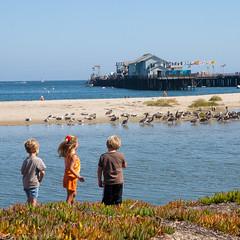 Wee three kids (itonys) Tags: ocean california santabarbara kids canon children pier wharf 2009 eos1dmarkii