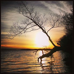 square squareformat oneidalake iphoneography instagramapp... (Photo: Daniel Piraino on Flickr)
