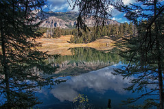 Illusionary Canvas (dbushue) Tags: autumn trees lake mountains nature clouds reflections landscape nikon hike trail shore archives yellowstonenationalpark wyoming troutlake 2010 reflectivesurface coth supershot absolutelystunningscapes damniwishidtakenthat coth5 illusionarycanvas
