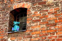 Hello there (Nefertar) Tags: bear window figure brick redbrick summer vacation torun poland creepy interesting manufacture whatchout whatisthis lonely blue weird brickwork texture abstract stonework