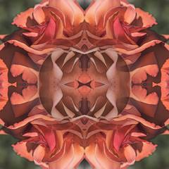 Kaleidoscopic Floral 4.0 (Ursa Davis) Tags: america north abstract actress art artist artwork creative davis decor digital eclectic fine flora floral flower flowers for garden geometric hip home international kaleidoscope kaleidoscopic manipulation mix modern nature northwest oregon organic pacific petal petals photo photograph photographer photography photoshop portait portland purchase rose roses sale shape shapes states test united ursa ursadavis usa west wwwursadaviscom