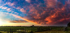 SUNSET IN THE PADDOCK (Laws Photography | www.lawsphotography.com) Tags: sunset beautiful landscape lawsphotography vaughanlaws vaughanlawsphotography canon canon6d amazingskies sky colorful colour colors paddocks panorama panoramic australia outdoor cloud clouds