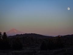 From last night's Powell Butte visit: A rising almost full moon and Mount Hood. #powellbuttenaturepark #powellbutte #mthood #moonrise (urbanadventureleaguepdx) Tags: moonrise mthood powellbutte powellbuttenaturepark
