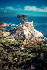 The Lone Cypress. (RKE_Photography) Tags: 17 mile drive california pebble beach america nikon d800 50mm f14 nikkor sky ocean tree clouds scenic lone cypress