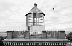 top of the old lighthouse (ELECTROLITE photography) Tags: topofthelighthouse lighthouse schinkelleuchtturm kaparkona rgen ruegen mve blackandwhite blackwhite bw black white sw schwarzweiss schwarz weiss monochrome einfarbig noiretblanc noirblanc noir blanc electrolitephotography electrolite sea seagull schinkel architektur