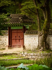 "The secret garden Seoul • <a style=""font-size:0.8em;"" href=""http://www.flickr.com/photos/44919156@N00/29454885901/"" target=""_blank"">View on Flickr</a>"