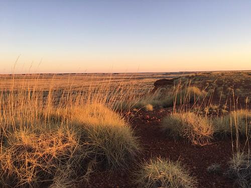 Sunset, Tanami Desert, WA