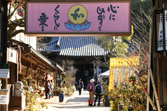 Entrance of Daisho-in (lilacandhoney) Tags: daishoin asia asie moment moments memory japan japon japanese asian french france mountains mountain asiatique garden temple monts flowers february day daytime colors travel trip