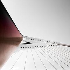 Erasmusbrug, Rotterdam (Lucin Reyns) Tags: erasmusbrug rotterdam nederland netherlands pentax