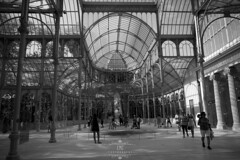 Palacio de Cristal (Elisabeth Martnez Cnovas) Tags: madrid parquedelretiro elretiro plazamayor puertadelsol palacio de cristal jardines puerta alcala