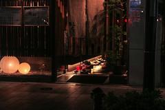 IMG_2275 (Brainra) Tags: japan tokyo osaka kyoto takayama fish japanese japonais japon deer daim biche cerf nara temple temples shinto buddha buddhist trip journey adventure katakana hiragana kawaii owl car cat cats owls animals plants nature wood wooden houses habitat streets street statue landscape